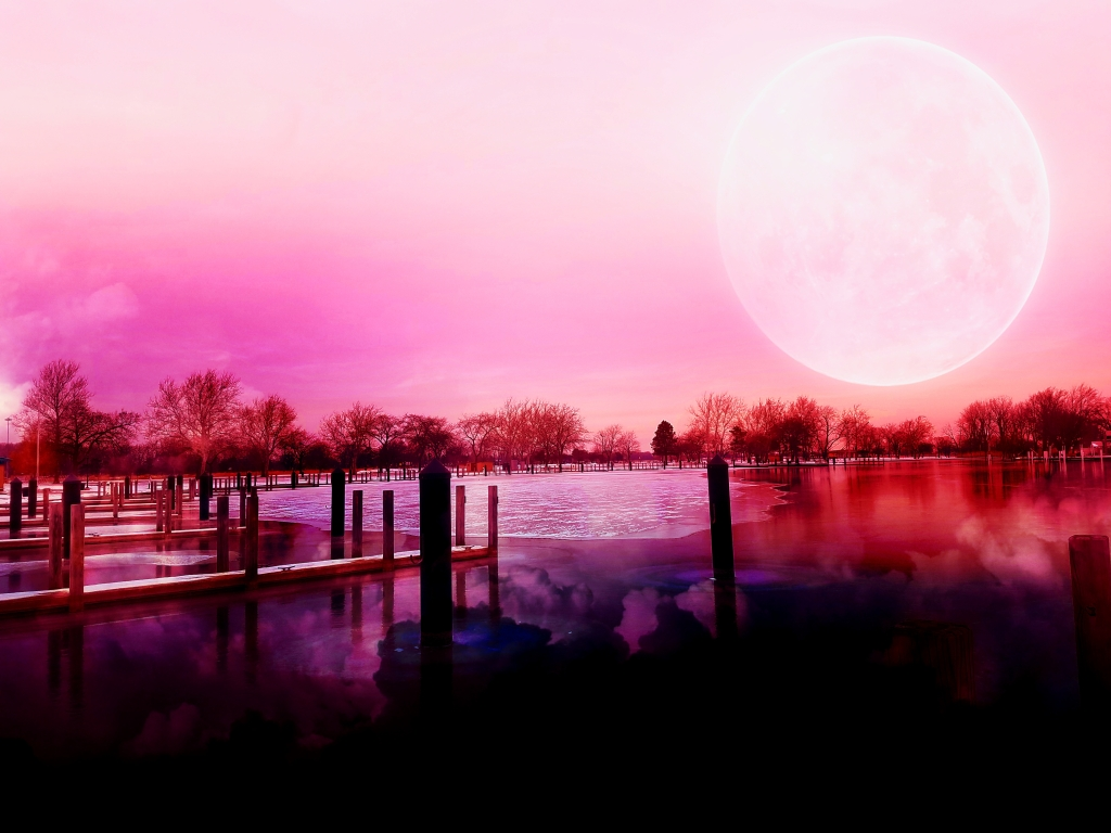 marina at lake st.clair metropark altered with a pink hue and a full moon in the sky