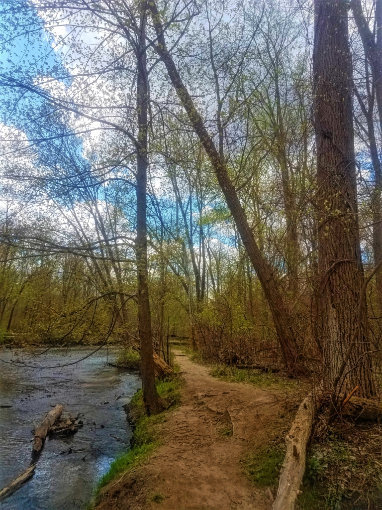 A trail in River Bends Park that runs parallel to the Clinton river.