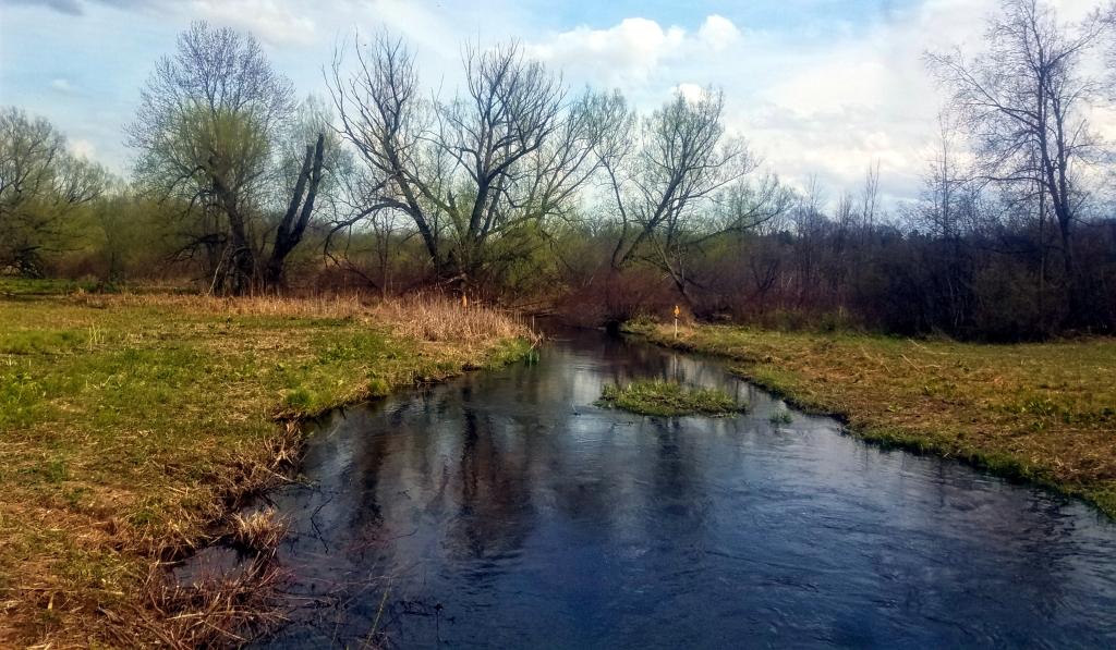 Inwood Trails Stream