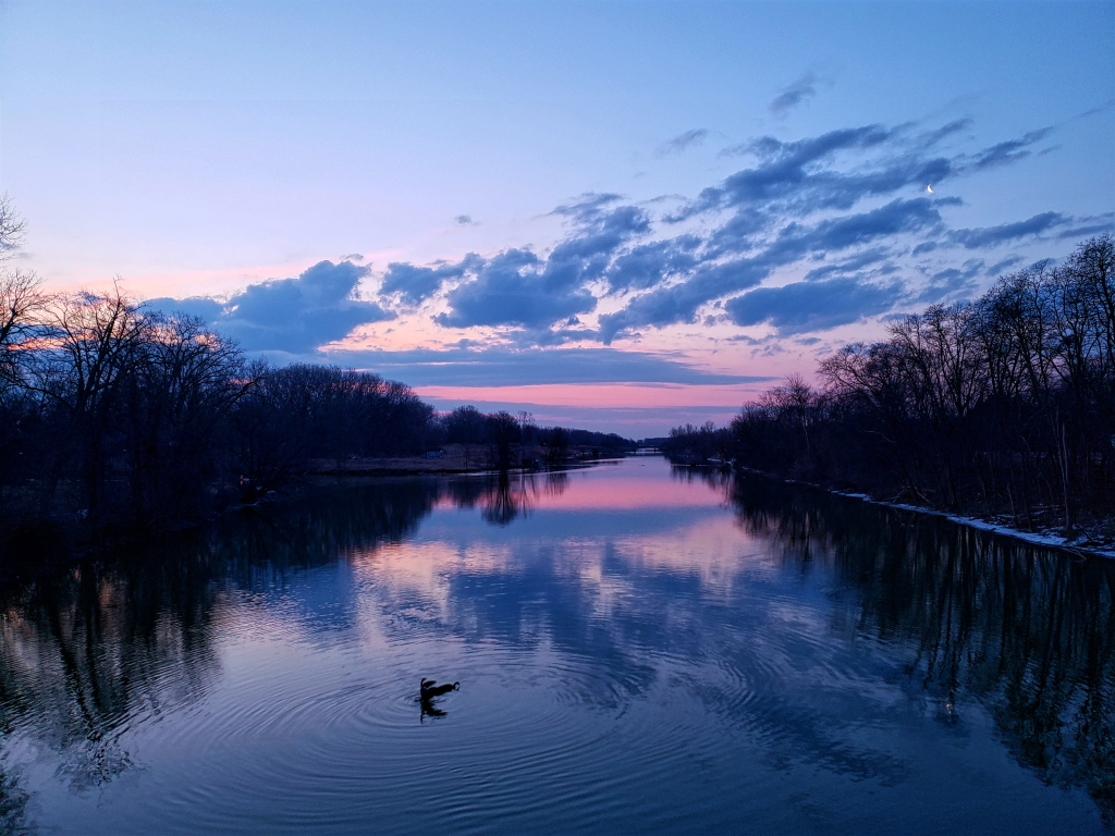 The Clinton River at Twilight. There are 2 ducks making ripples in the water in this photo.