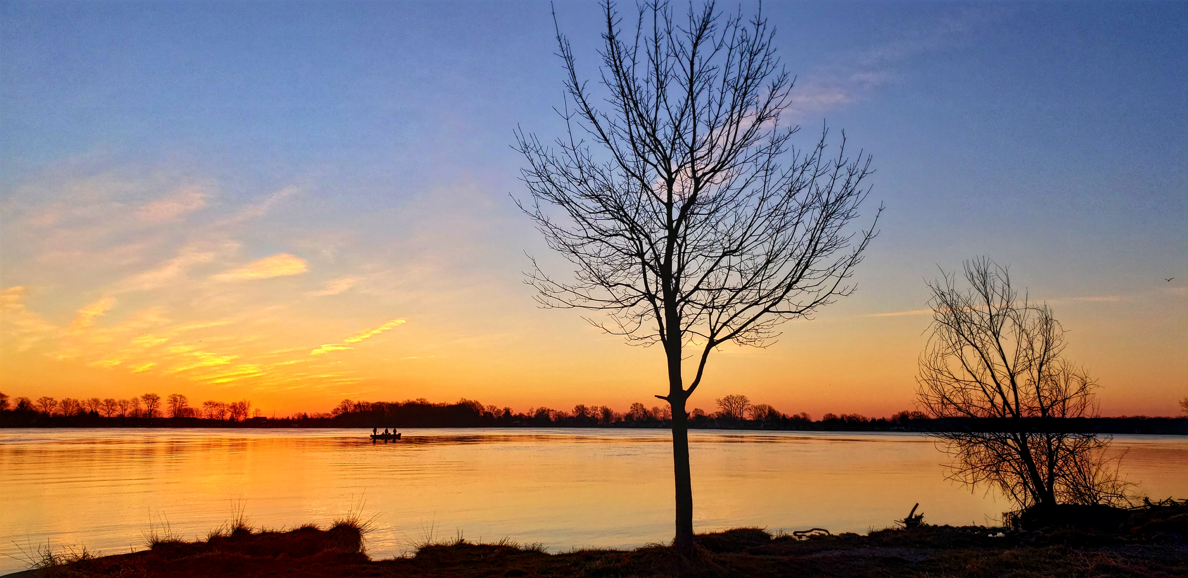 A silhouette of a tree as the sun rises over the St.Clair River. In the background there is a boat.