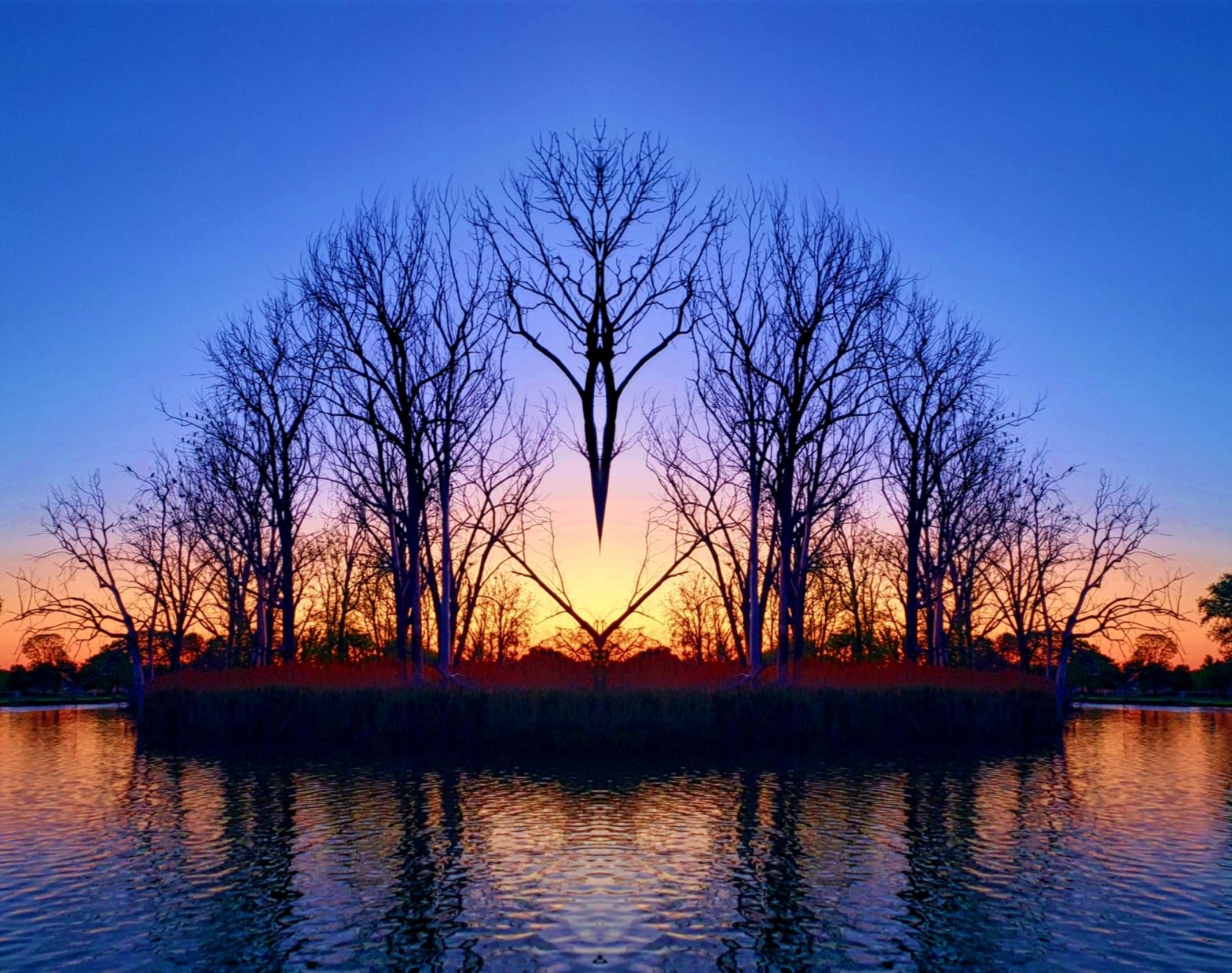 Sunrise Swamp Photo Art