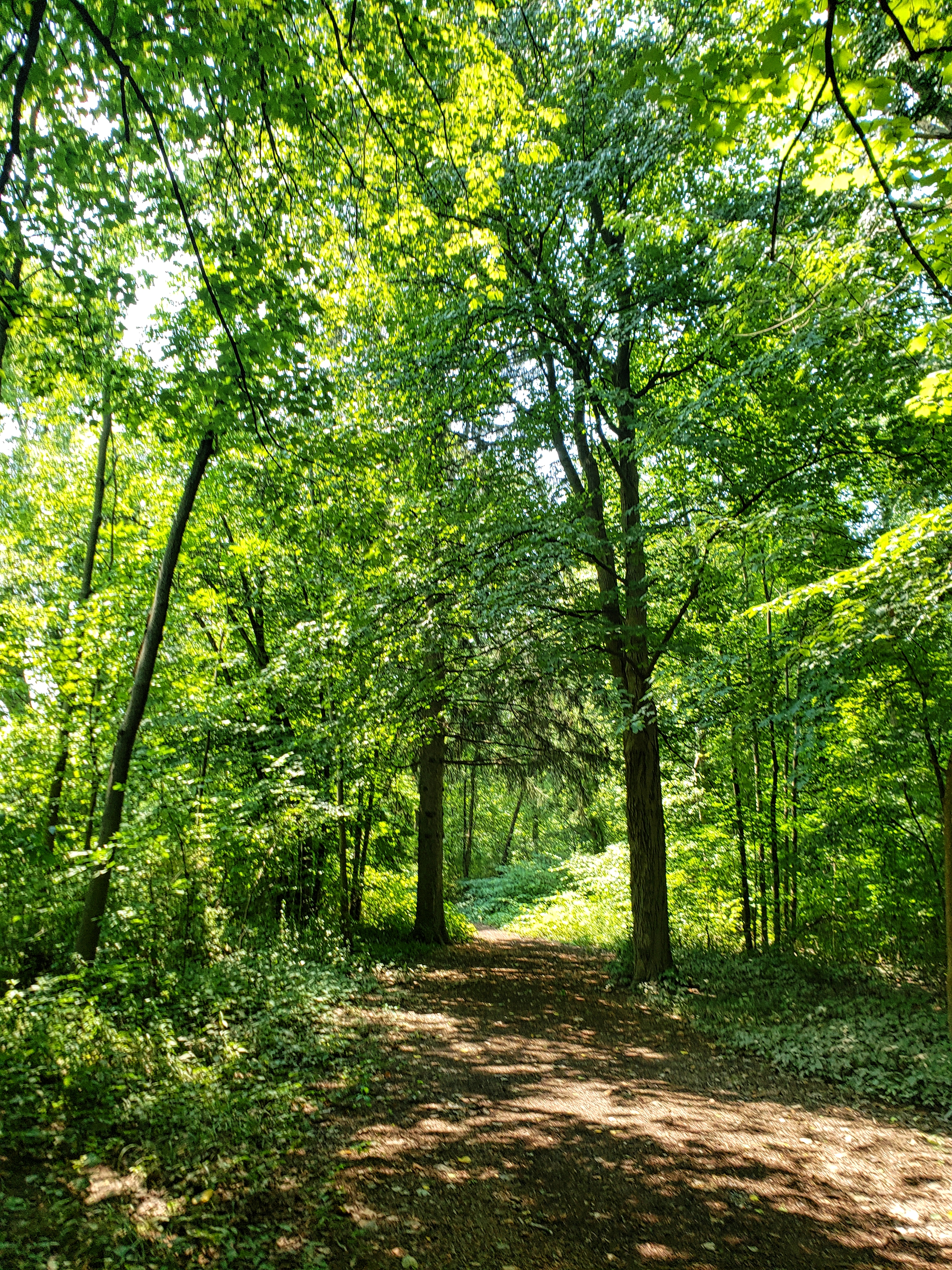 The Don Green Way Nature Trail