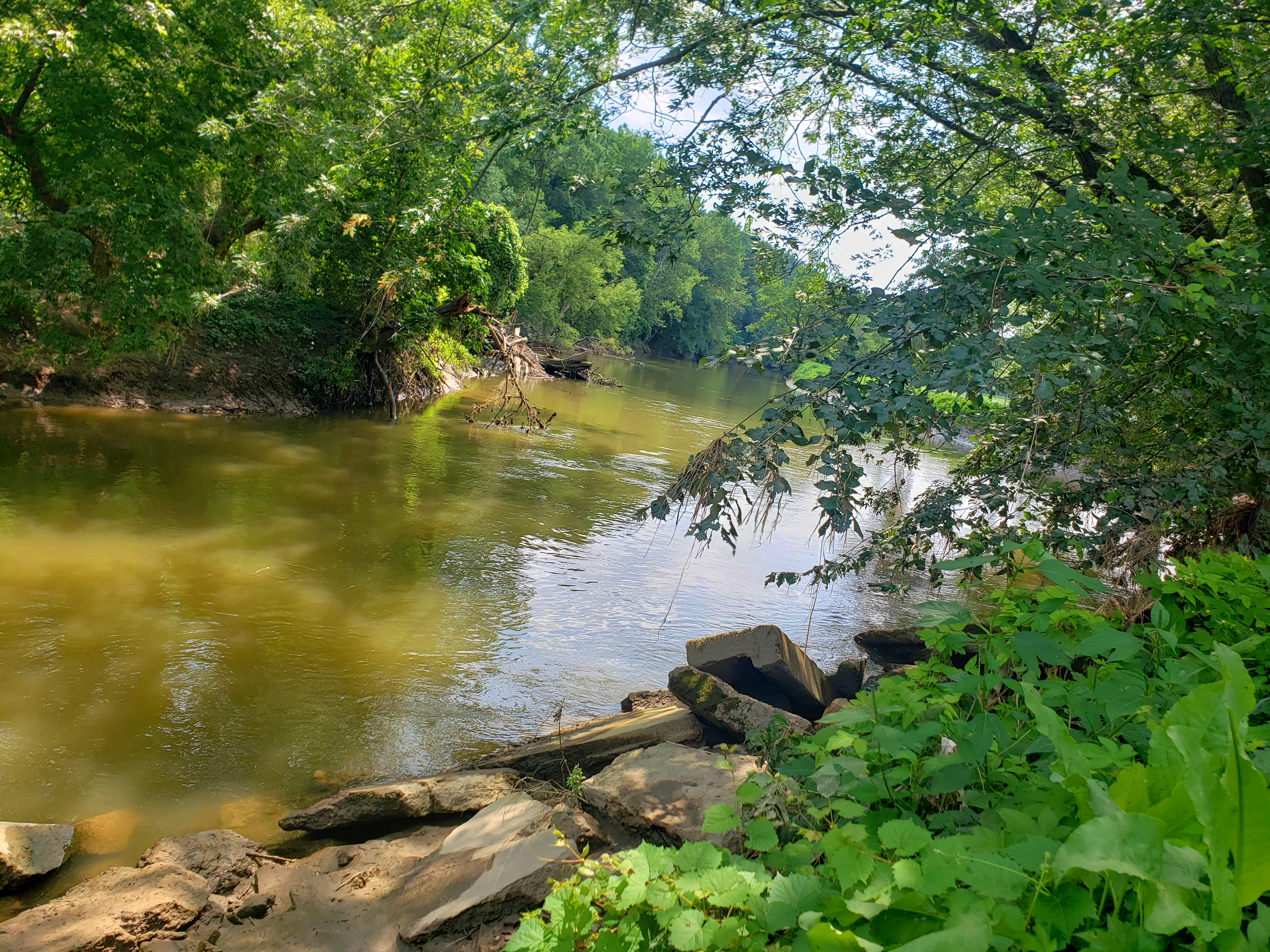 view of the Clinton River along the Don Green Way Nature Trail