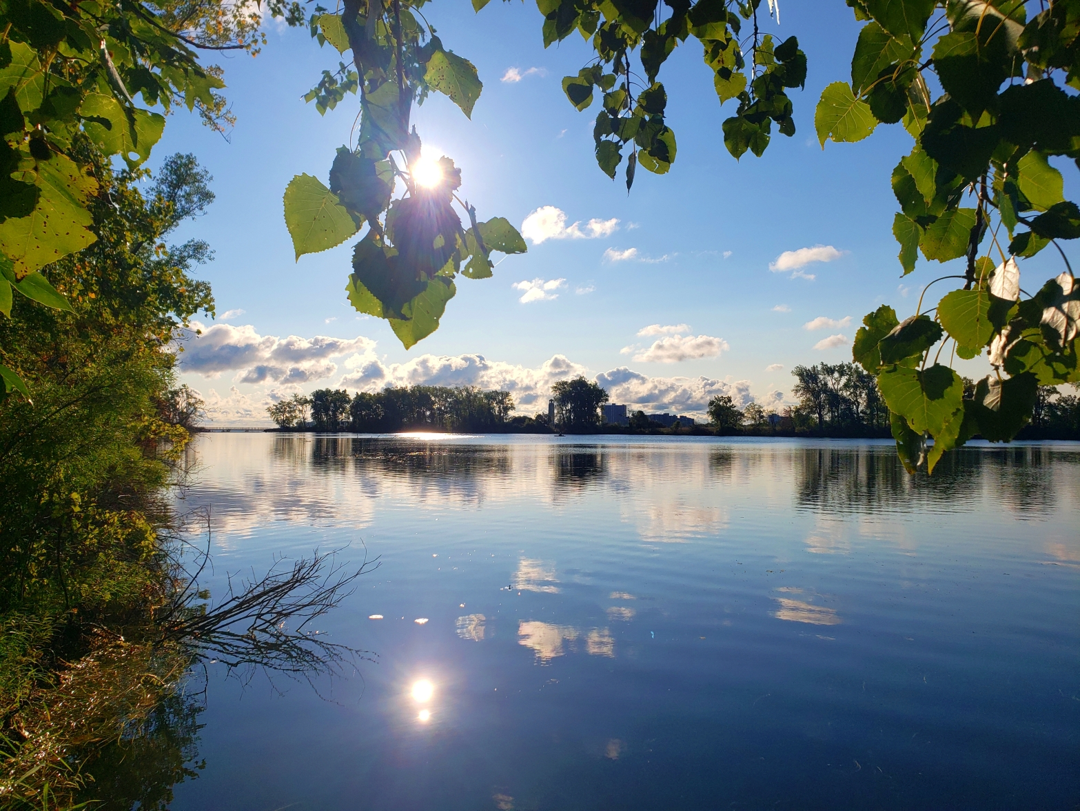 The Blue Heron Lagoon on Belle Isle State Park in Detroit Michigan