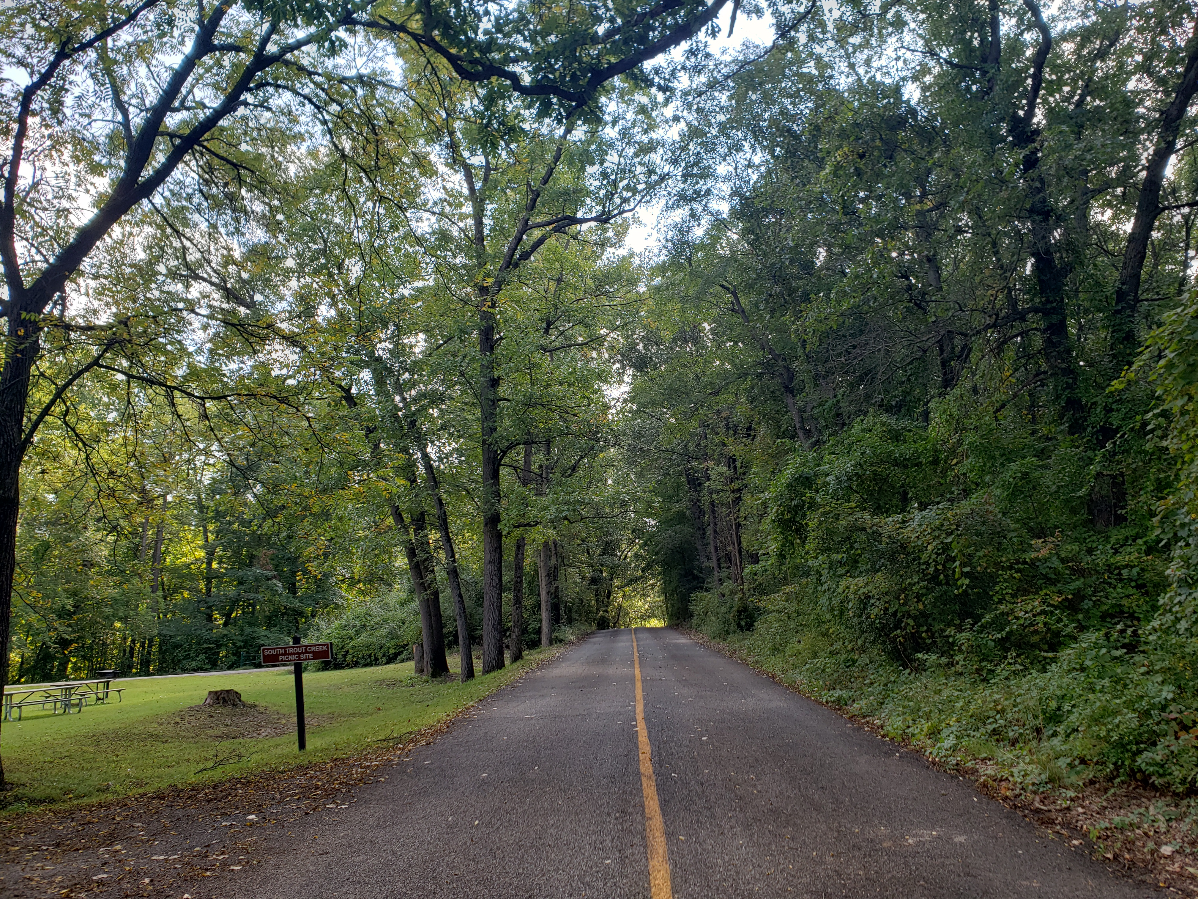 A road that travels through Bald Mountain Recreation Area in Lake Orion Michigan.