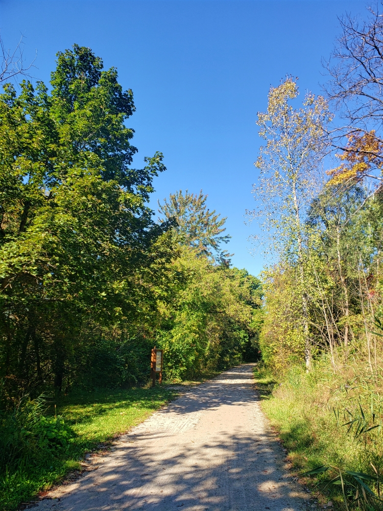 The Clinton River Trail curves off into the woods on a warm autumn afternoon