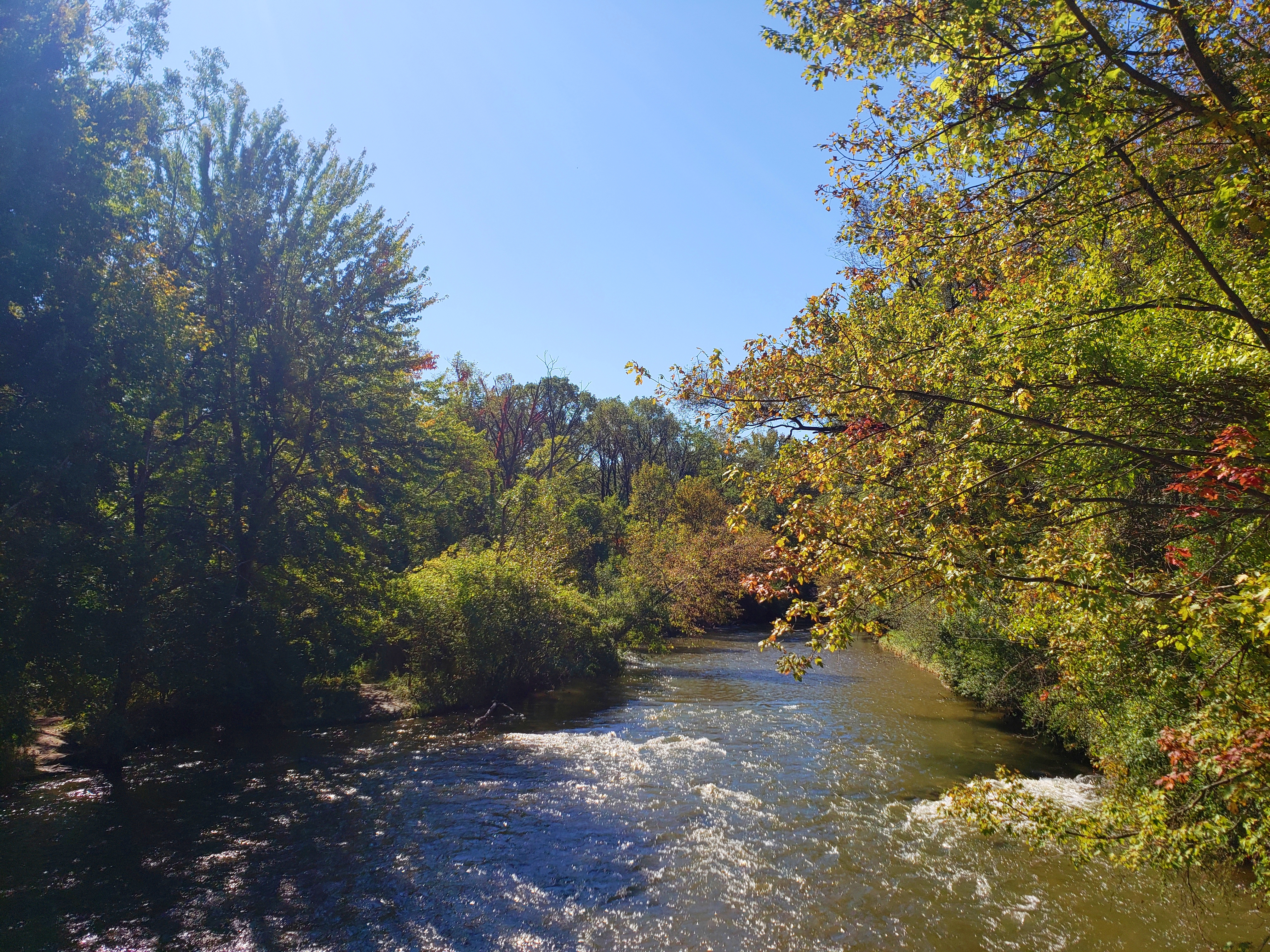 A view of the Clinton River as seen from the Clinton River Trail