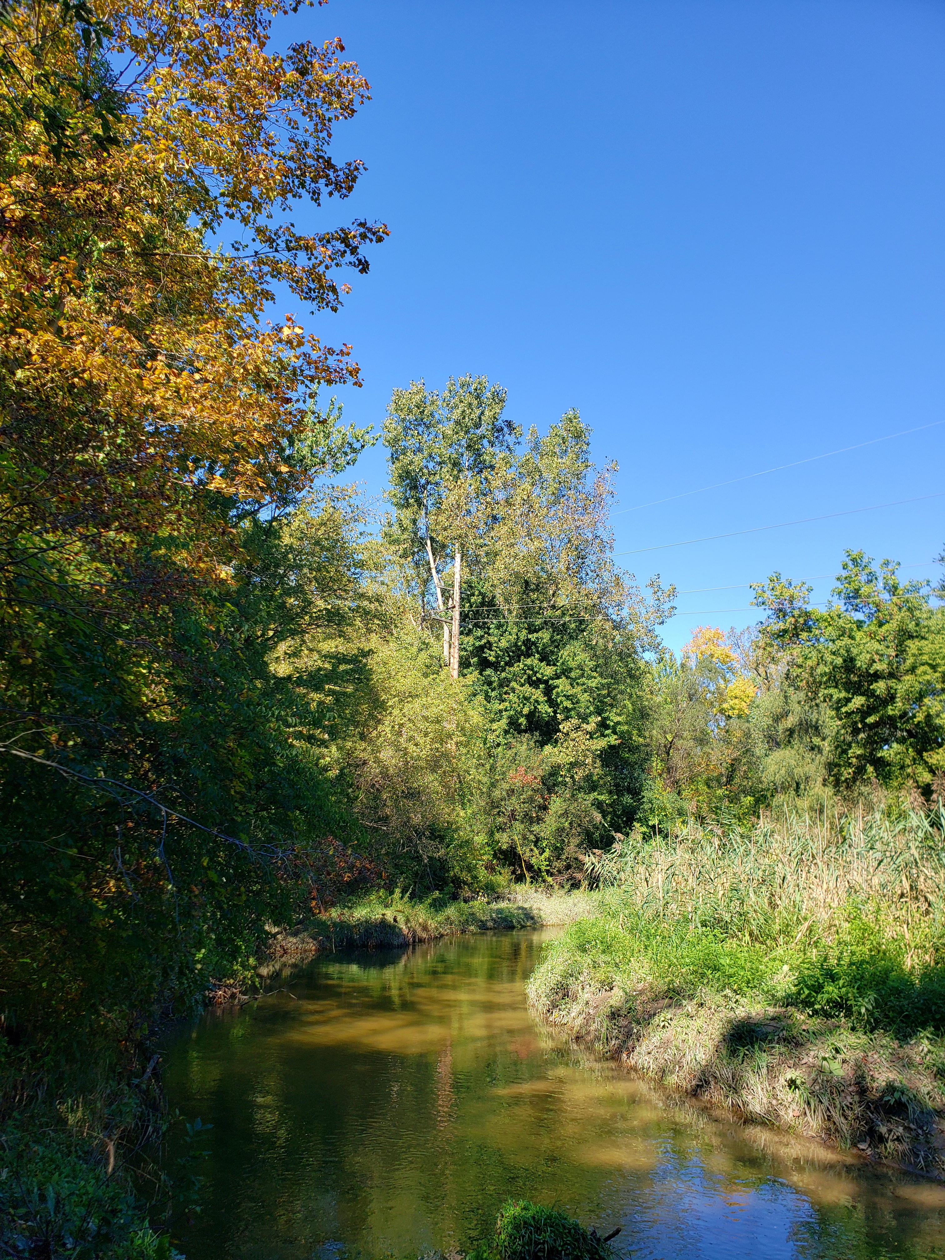 The Clinton River